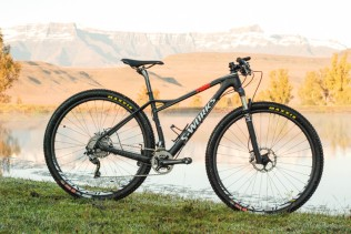 The Specialized Fate 29