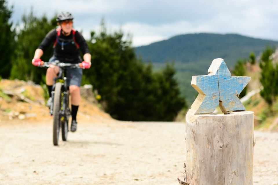 'Yeeaaa!' says the Trail Art. 'You reached the top of the hill. Now drop that seat and enjoy every bit of this sweet, sweet descent!'