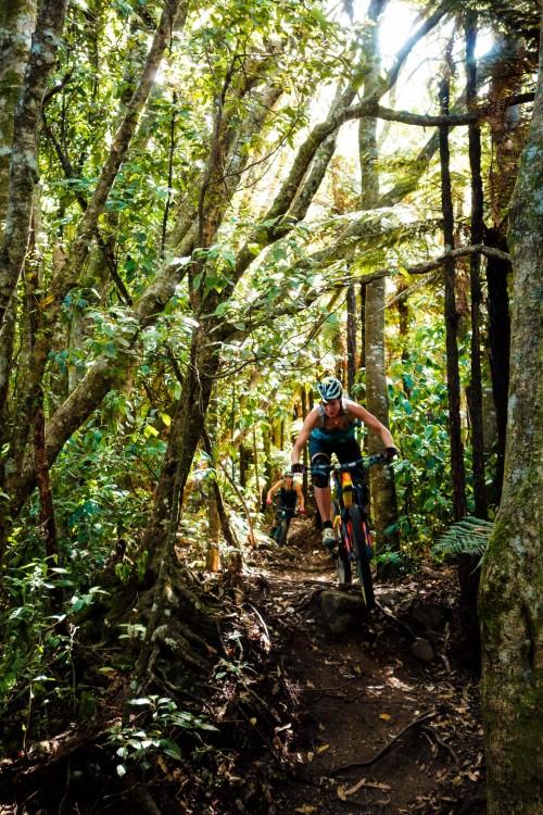 Kataore - my new favourite trail.