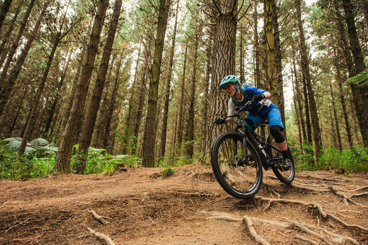 Reviewed: Specialized Rhyme Expert Carbon 650b
