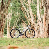 Long term review: Specialized Amira SL4 Pro Race road bike
